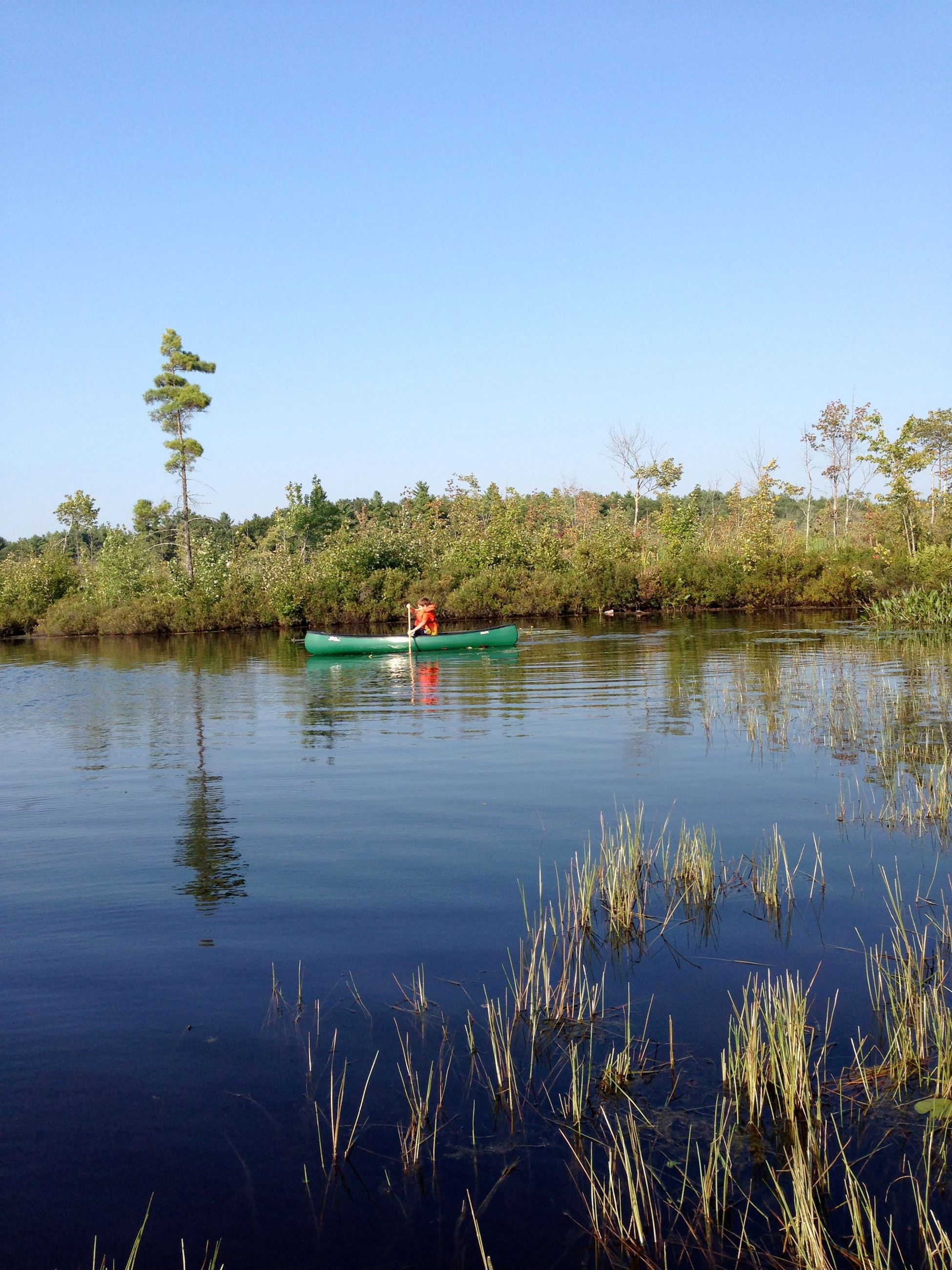 Turee Pond Canoeing (photo by Sandra Crystall)