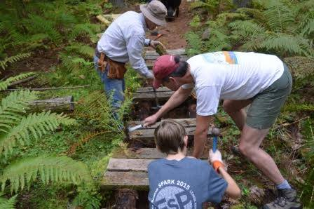 Repairs at Knox Forest, Boundary Trail (photo by Bow Open Spaces)