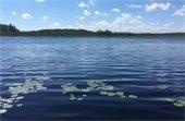 Turee Pond