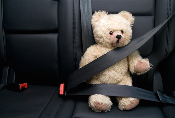 Join the Clique Seatbelt Campaign